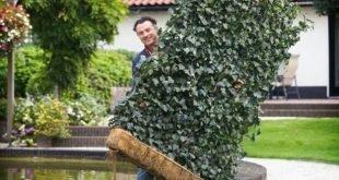 DIY Hinterhof Ideen aus Metalldraht in schöne Gartendekorationen verwandeln