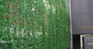 Sichtschutzwand von Nachbarn braun in Töpfen und entspricht vorhandenem Elfenbein ... vielleicht Jasmin verwenden.