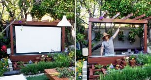 Thymian zeigen: So bauen Sie ein Freilufttheater in Ihrem Garten