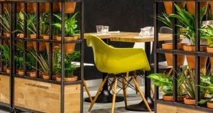 m & s cafè - kiwiandpom #grün #pflanzen #screen