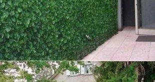 Verleihen Sie Ihrem Garten oder Garten mit Pflanzen Privatsphäre