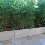 Als ich Ende 2011 einen Pflanzenschirm zwischen unserem Terrassenbereich und unserem ne ...