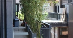 Bambus als Balkon Sichtschutz Kräuter Idee modernes Design Efeu