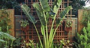 Greg und Nickis üppiger tropischer Innenhof