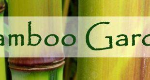 Möchten Sie Bambus in Ihrem Garten pflanzen? Ich habe diese Seite gefunden und es gibt eine Menge ...