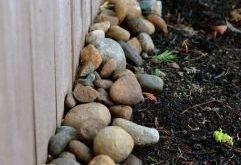 10 Backyard Privacy Fence Landschaftsbau Ideen mit kleinem Budget