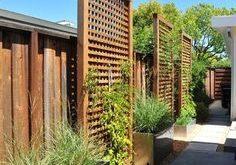35 Intelligente und stilvolle Garten-Screening-Ideen, um Ihren Garten zu transformieren