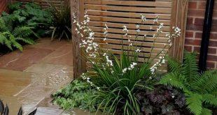 64+ Amazing Privacy Fence für Terrassen- und Hinterhof-Landschaftsbau-Ideen