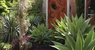 Agave, Tradescantia pallida & # 39; Purpurea & # 39 ;, rostende Stahlsiebe und ...