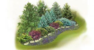 Evergreen Screen Landscape Plan: Verschaffen Sie sich Privatsphäre, ohne dabei auf Schönheit zu verzichten. Diese e ...