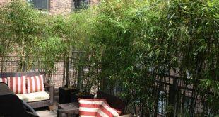 So verbessern Sie die Privatsphäre von Rooftop Garden