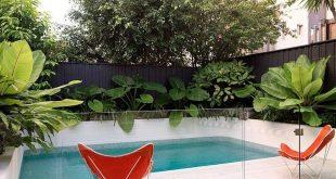 Tauchbecken + tolle tropische Bepflanzung - Poolzaun, erstaunlich, Glaszaun, schwarz ...