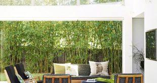 Top 5 Siebpflanzen für Ihren Garten