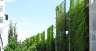 Vegetierte grüne Bildschirme - Google-Suche