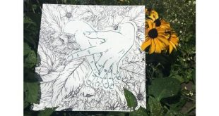 Verkauf ~ Kraft der Pflanzen - Siebdruck Kunstdruck