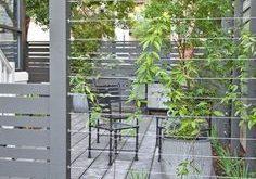 Zwischen den Zaunpfosten montierte Kabeldrähte bilden eine robuste Stütze für Klett ...