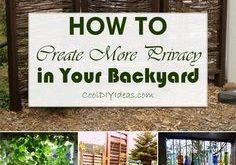 12 clevere Möglichkeiten, mehr Privatsphäre in Ihrem Garten zu schaffen