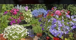 8 Apartment Balkon Garten Deko-Ideen, die Sie sich ansehen müssen