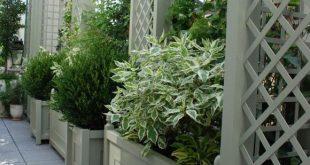 Aluminium treillage und Pflanzgefäße auf dem Balkon