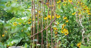 Der maximalistische Londoner Garten des Friseurs Sam McKnight