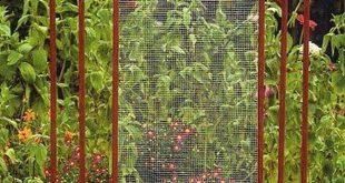 Diese Metallgarten-Gitter sind mit oder ohne Pflanzen schön
