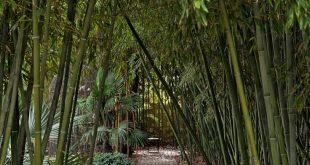 Französisch Country Garden Inspiration: Avignon Chateau