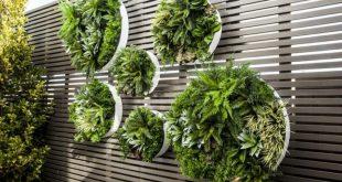 Greenery importiert künstliche Pflanzen. Wir sind Australiens größter Importeur von ...