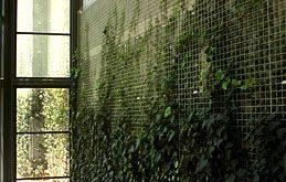 Ich liebe diese Idee. Ich möchte eine senkrechte Wand in meinem eigenen Haus haben, hätte aber ...