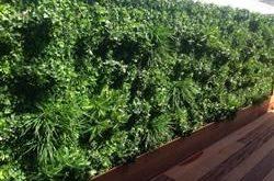 Künstlicher vertikaler Garten der weißen Oase 1m x 1m Pflanzenwand-Siebplatte UV-geschützt