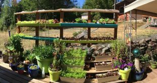 Wie man ein Privatleben plus ein Garten-Bereich DIY errichtet
