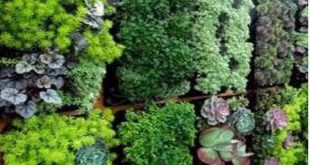 12 Pocket Outdoor vertikale lebende Wand Pflanzer