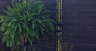 18 Möglichkeiten, einem Deck oder Patio Privatsphäre zu verleihen