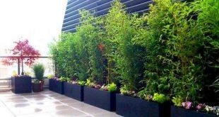 64+ Amazing Privacy Fence für Patio & Hinterhof Landschaftsbau Ideen - Seite 6 von 65