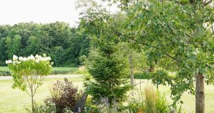Bildergebnis für die Landschaftsgestaltung der Gartenfront des Hauses berm diy