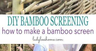 DIY Bambus Screening. Lass uns etwas über Bambus lernen! Es ist eine erstaunliche Pflanze, die b ...