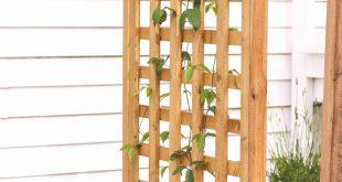 DIY Spalier Pflanzer