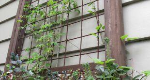 Gitter in einer Fensterkiste ohne Fenster - könnte auf der Seite der Terrasse oder ...