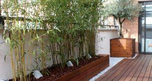 Hochbeet für Bambuspflanzen mit Mulch und Bodenbeleuchtung