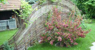 Leinwand im Garten mit Vegetation