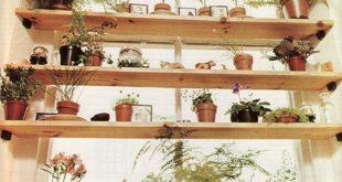 Pflanzenregale im Fenster - dazu brauche ich so viele Pflanzen