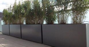 Sichtschutz Balkon rechteckige Pflanzgefäße Bambuspflanzen
