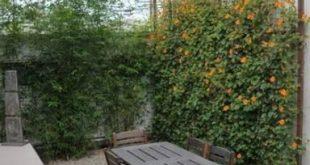 49+ Trendy Garden Patio Privacy Terrassen
