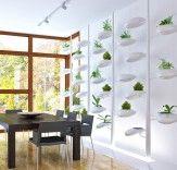 Danielle Trofes Live-Bildschirm ist eine selbstbewässernde Wand für Zimmerpflanzen