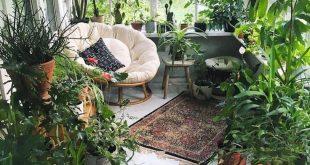 Ein Wintergarten mit Topfpflanzen und einem gemütlichen Sessel