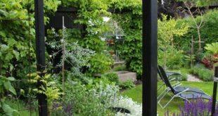 Pergola Könnte auch hinter dieser Terrasse sein. Planen Sie die ...