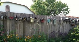 Reihe von Vogelhäuschen, das könnte an meinem Zaun sein, oh, ungefähr 10 ...