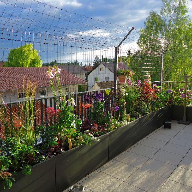 W. Hoelbing - Katzengarten - Katzenzäune - Katzennetze - Gartengestaltung - Die ...