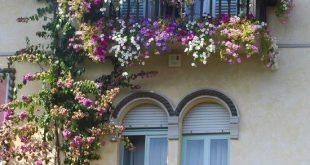 Dekorieren Sie #Balkonpflanzen lila weiß # Geländer