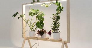 GreenFrame Fügt überall ein grünes Fenster hinzu