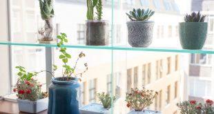 Pflanzen & Privatsphäre hinzufügen: DIY Glass Window Shelving System